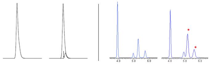 HPLC column overload