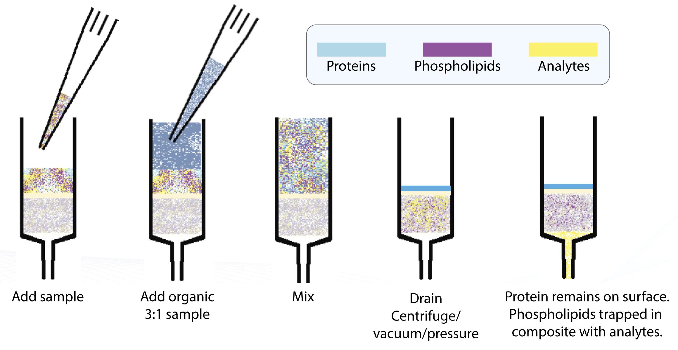 Microlute protocol