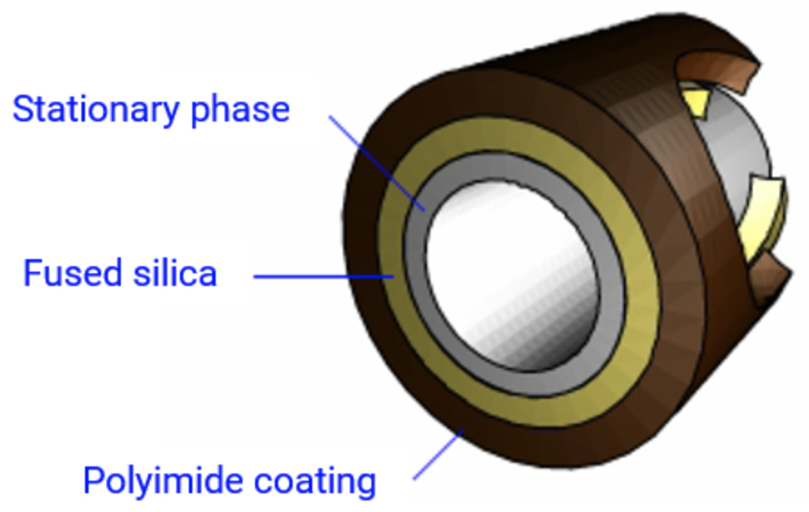 Typical cross section of a wall coated open tubular (WCOT) capillary GC column.