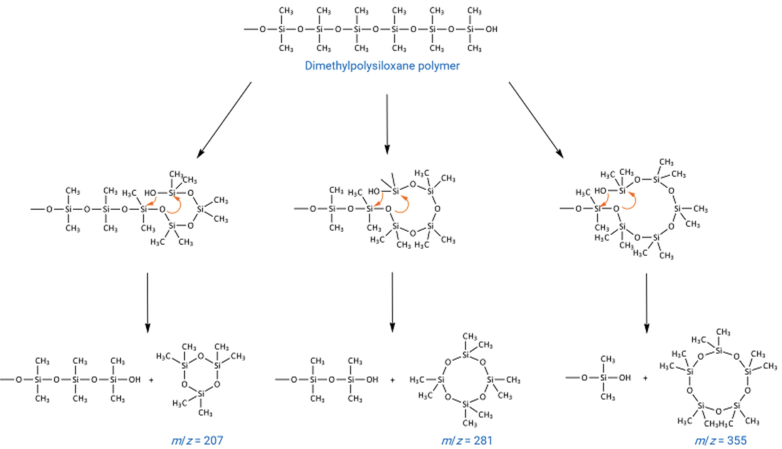 Reaction scheme for formation of cyclic polysiloxane bleed products from a dimethyl polysiloxane immobilised GC stationary phase.